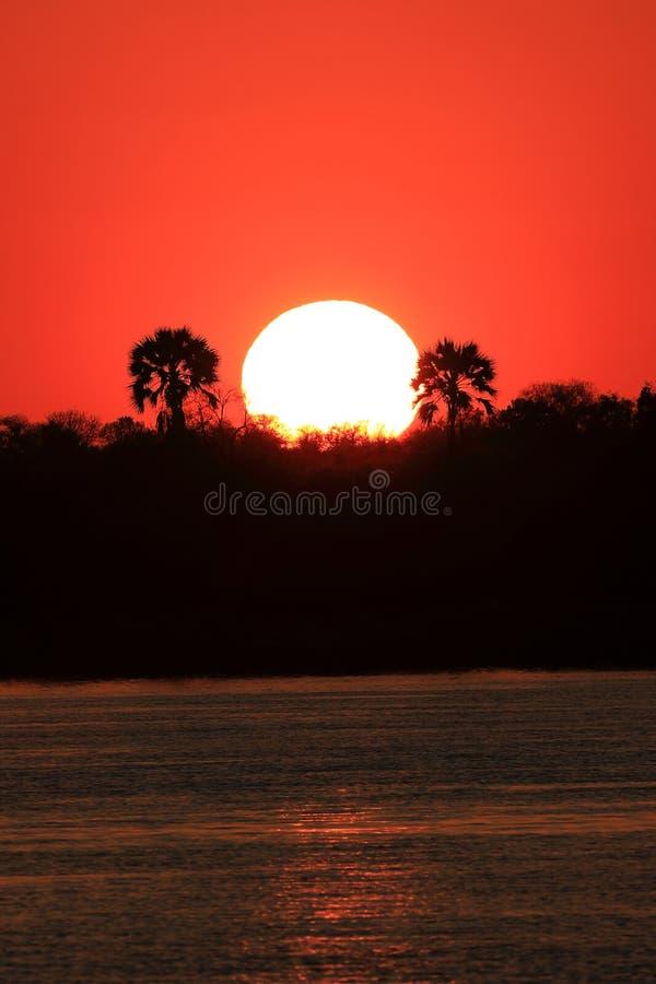 Ηλιοβασίλεμα πέρα από τον ποταμό Zambeze στοκ φωτογραφία με δικαίωμα ελεύθερης χρήσης