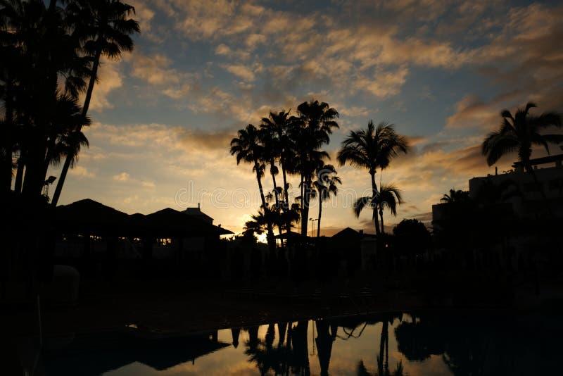 Ηλιοβασίλεμα πέρα από τον ωκεανό και τη σκιαγραφία φοινικών στοκ φωτογραφίες