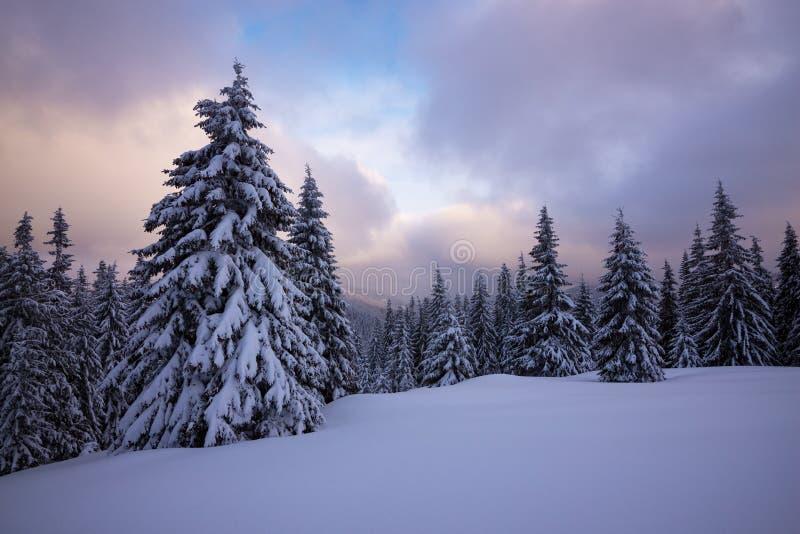 Ηλιοβασίλεμα στα χειμερινά βουνά μετά από τις χιονοπτώσεις στοκ εικόνα