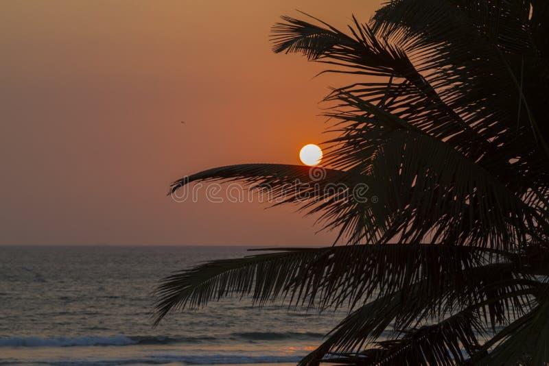 Ηλιοβασίλεμα στην τράπεζα του Ινδικού Ωκεανού στοκ φωτογραφία