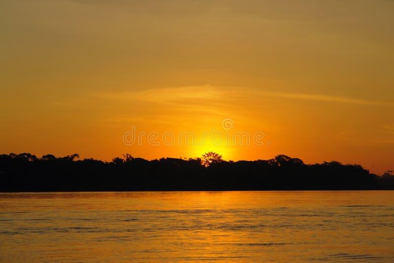 Ηλιοβασίλεμα στη ζούγκλα Puerto Maldonado στοκ εικόνες με δικαίωμα ελεύθερης χρήσης