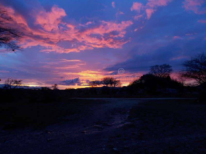 Ηλιοβασίλεμα στη μέση του Serengeti στοκ φωτογραφία με δικαίωμα ελεύθερης χρήσης