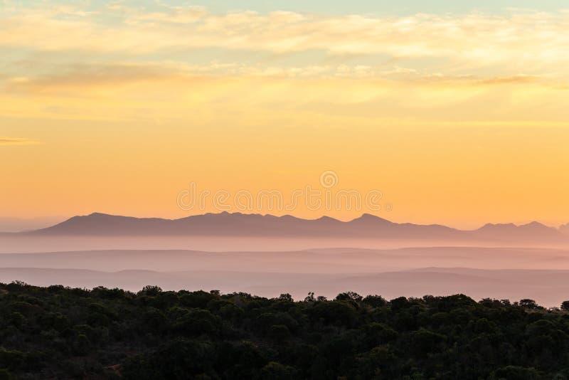 Ηλιοβασίλεμα στον ελέφαντα Nationalpark Addo στοκ φωτογραφία με δικαίωμα ελεύθερης χρήσης