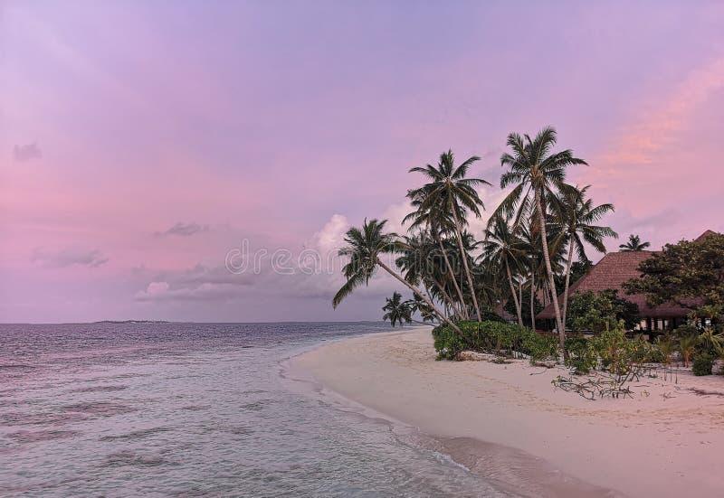 Ηλιοβασίλεμα στο νησί Μαλδίβες ατολλών παραλιών στοκ φωτογραφία με δικαίωμα ελεύθερης χρήσης