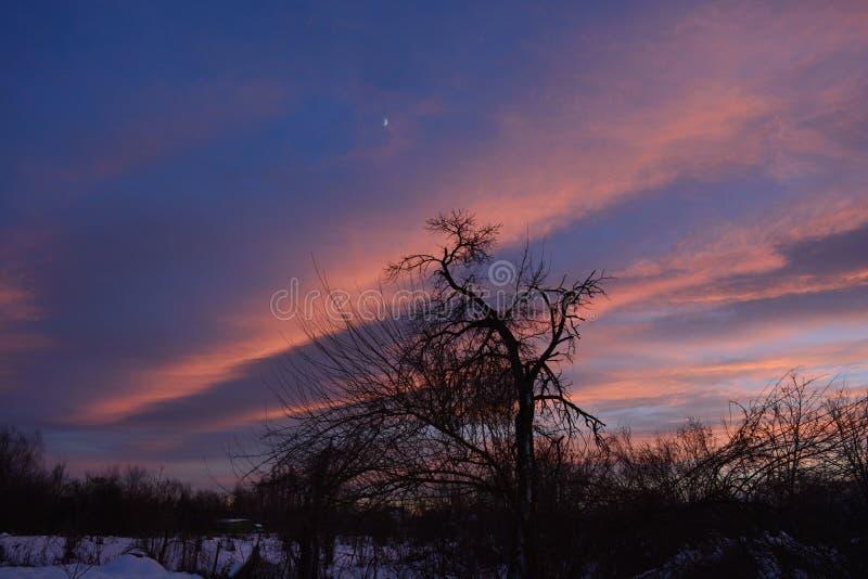Ηλιοβασίλεμα στο χωριό στοκ φωτογραφία