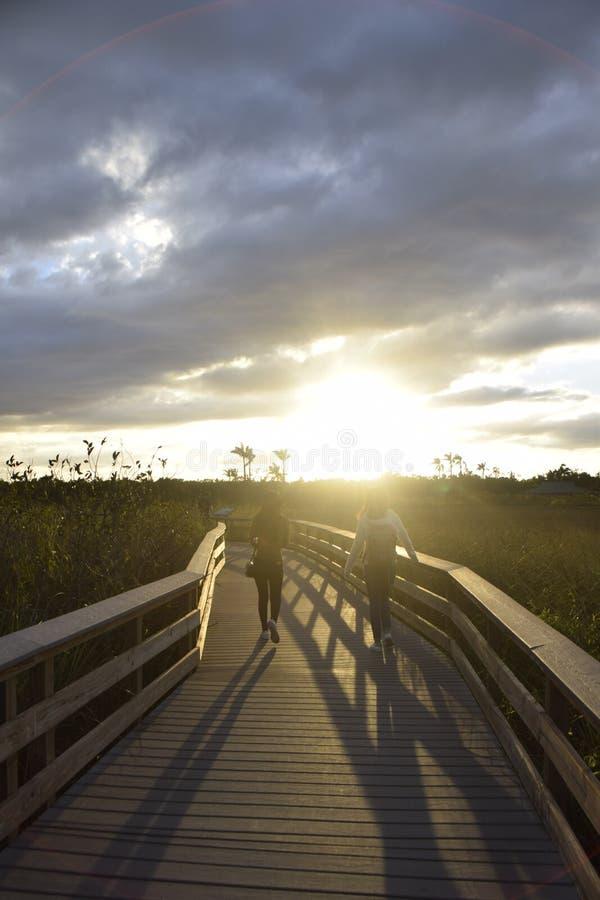 Ηλιοβασίλεμα στο Everglades στοκ φωτογραφίες