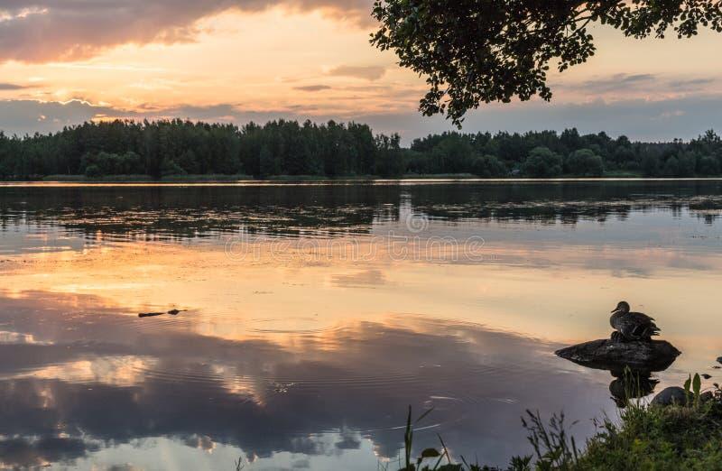 Ηλιοβασίλεμα το θερινό βράδυ στοκ εικόνα