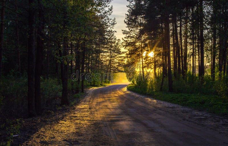Ηλιοβασίλεμα το θερινό βράδυ στοκ εικόνες