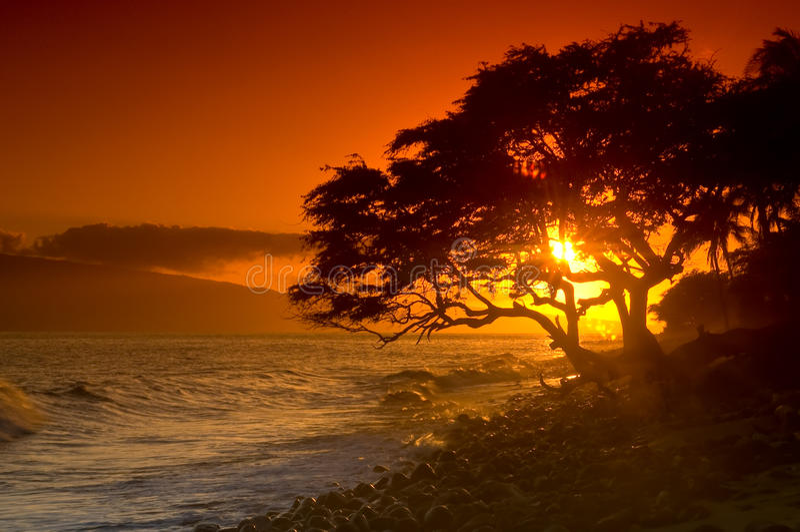 ηλιοβασίλεμα Maui στοκ φωτογραφία με δικαίωμα ελεύθερης χρήσης