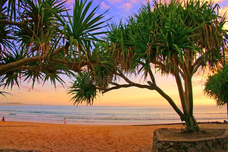 ηλιοφάνεια ακτών της Αυστραλίας στοκ φωτογραφίες