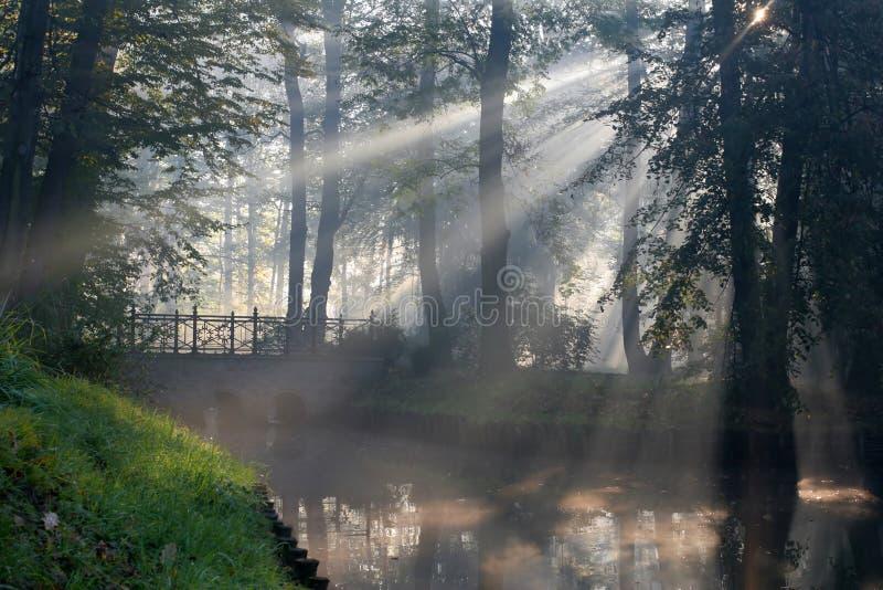 ηλιοφάνεια υδρονέφωσης στοκ φωτογραφίες