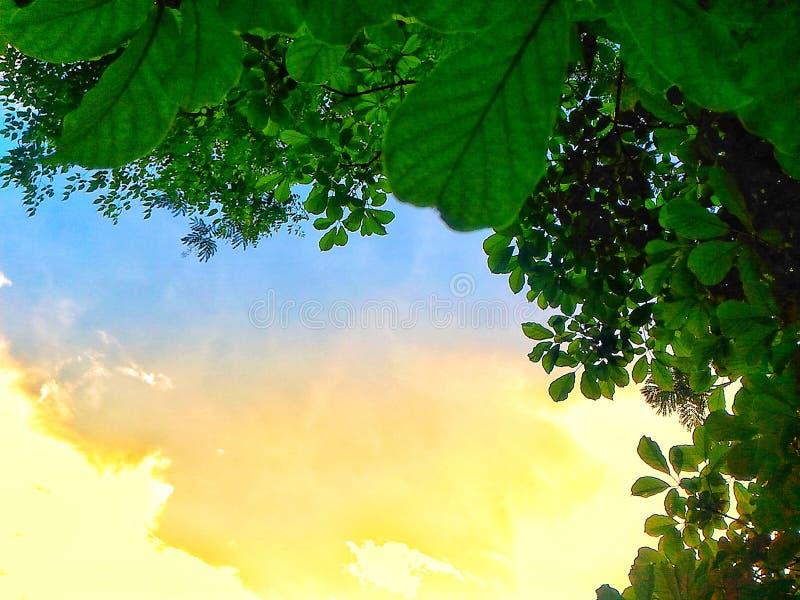 Ηλιοφάνεια στοκ εικόνες με δικαίωμα ελεύθερης χρήσης