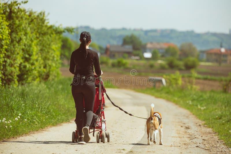 Ηλιόλουστη ημέρα στην επαρχία Μητέρα με το σκυλί παιδιών και λαγωνικών που περπατά μακριά στοκ εικόνες με δικαίωμα ελεύθερης χρήσης