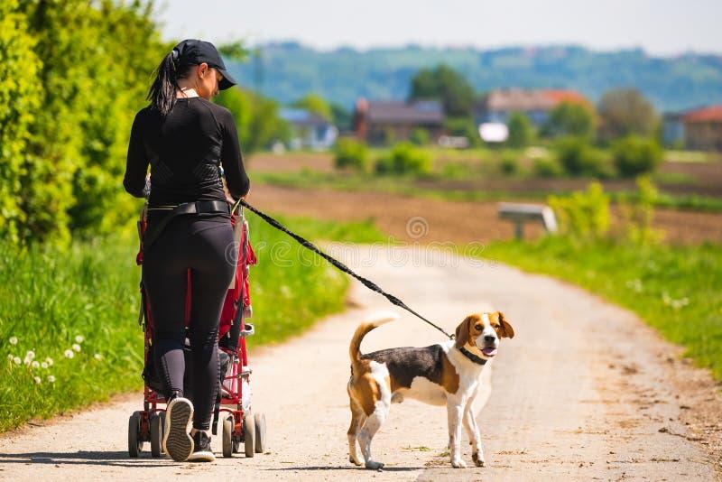 Ηλιόλουστη ημέρα στην επαρχία Μητέρα με το σκυλί παιδιών και λαγωνικών που περπατά μακριά στοκ φωτογραφία