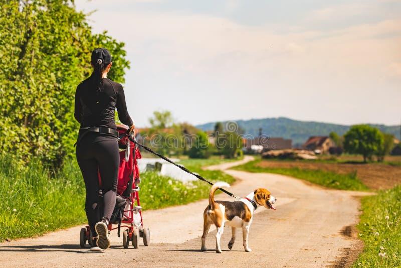 Ηλιόλουστη ημέρα στην επαρχία Μητέρα με το σκυλί παιδιών και λαγωνικών που περπατά μακριά στοκ φωτογραφίες