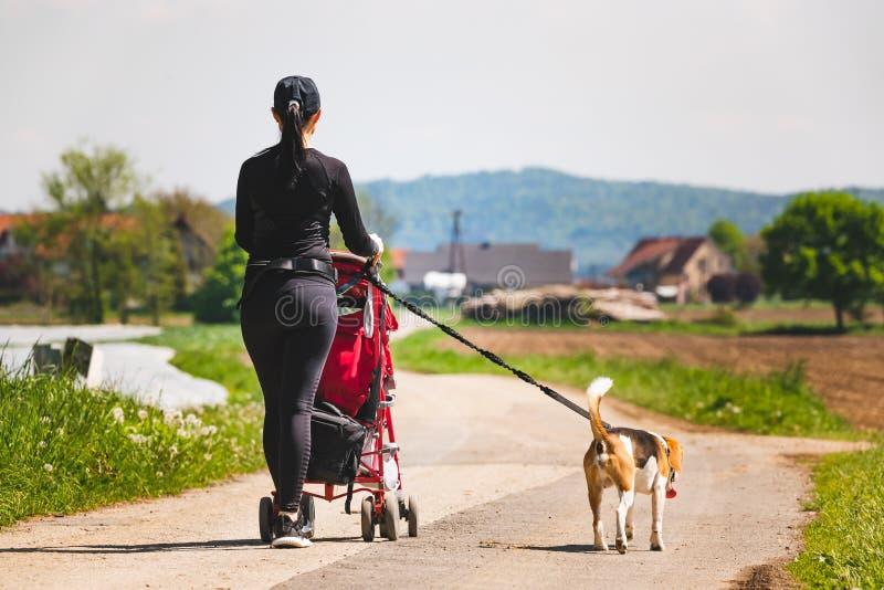 Ηλιόλουστη ημέρα στην επαρχία Μητέρα με το σκυλί παιδιών και λαγωνικών που περπατά μακριά στοκ εικόνες