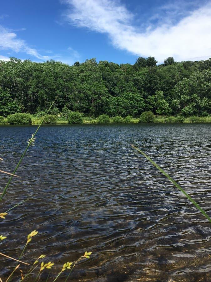 Ηλιόλουστη λίμνη της Brooke στοκ φωτογραφία με δικαίωμα ελεύθερης χρήσης