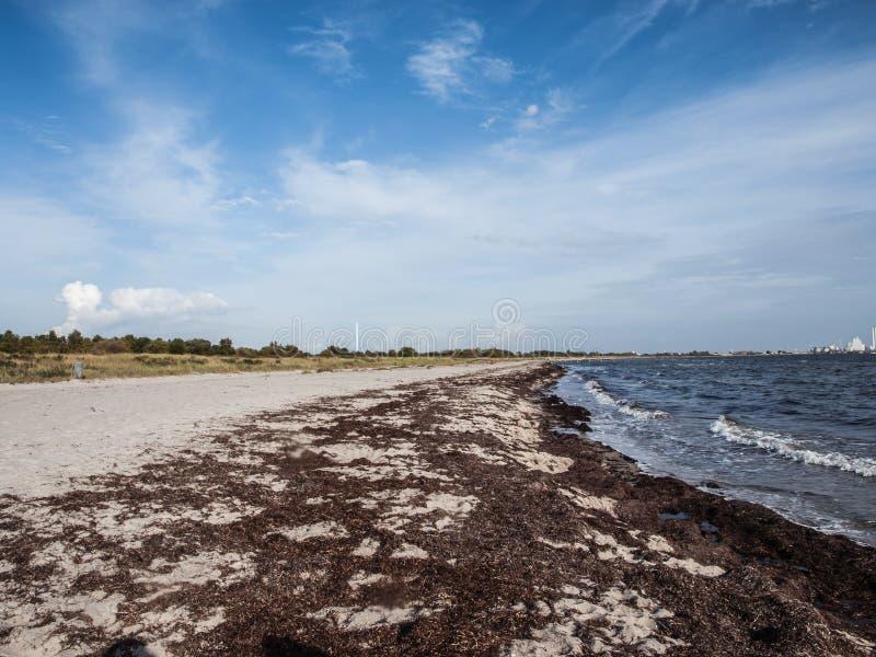 Ηλιόλουστη παραλία 2 στοκ φωτογραφία με δικαίωμα ελεύθερης χρήσης