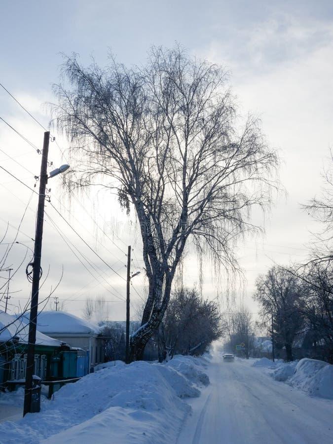 Ηλιόλουστη χειμερινή ημέρα στη Σιβηρία Στενή οδός που πηγαίνει στον ορίζοντα, μέρος του χιονιού γύρω Τοπίο χώρας, μικρά ξύλινα σπ στοκ εικόνες