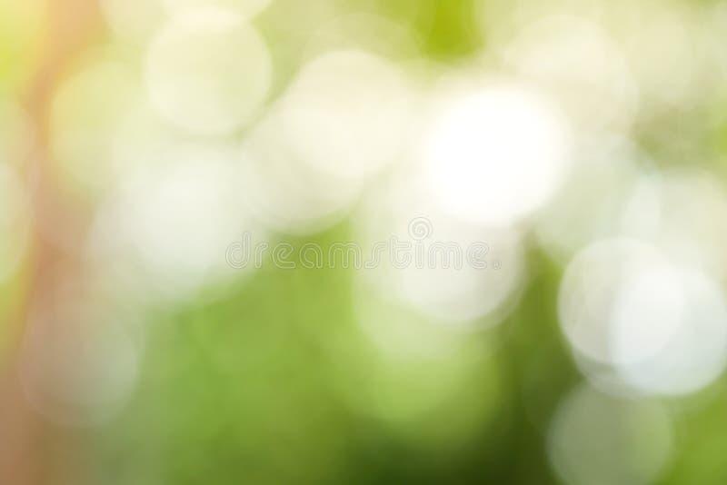 Ηλιόλουστο αφηρημένο πράσινο υπόβαθρο φύσης, πάρκο θαμπάδων με το φως bokeh, φύση, κήπος, άνοιξη και θερινή περίοδο στοκ φωτογραφίες