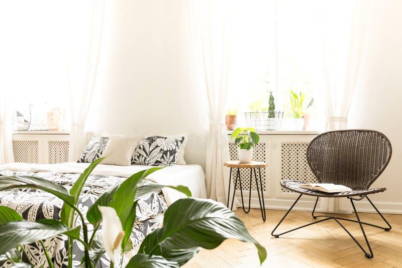 Ηλιόλουστο εσωτερικό κρεβατοκάμαρων με ένα κρεβάτι, μια καρέκλα ινδικού καλάμου και πράσινες εγκαταστάσεις Υπόβαθρο φλογών Πραγμα στοκ εικόνες