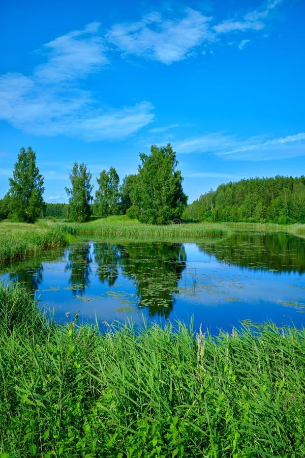 Ηλιόλουστο θερινό τοπίο με τον ποταμό Πράσινοι λόφοι και λιβάδια Τομείς της πολύβλαστης πράσινης χλόης στοκ εικόνες