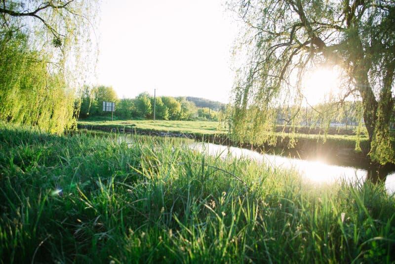 Ηλιόλουστο τοπίο βραδιού άνοιξη κοντά στον ποταμό στοκ εικόνες με δικαίωμα ελεύθερης χρήσης