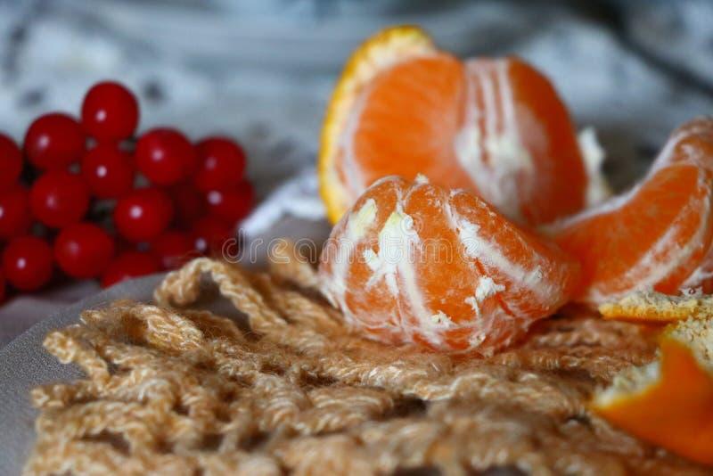 ηλιόλουστο tangerine στοκ εικόνες με δικαίωμα ελεύθερης χρήσης