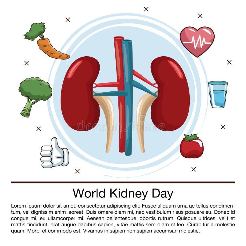 Ημέρα παγκόσμιων νεφρών infographic απεικόνιση αποθεμάτων