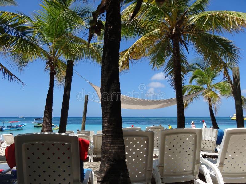 Ημέρα παραλιών στα νησιά Ονδούρα κόλπων Roatan στοκ εικόνες με δικαίωμα ελεύθερης χρήσης