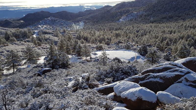 Ημέρα χιονιού διασκέδασης στη χειμερινή χώρα των θαυμάτων στοκ εικόνα