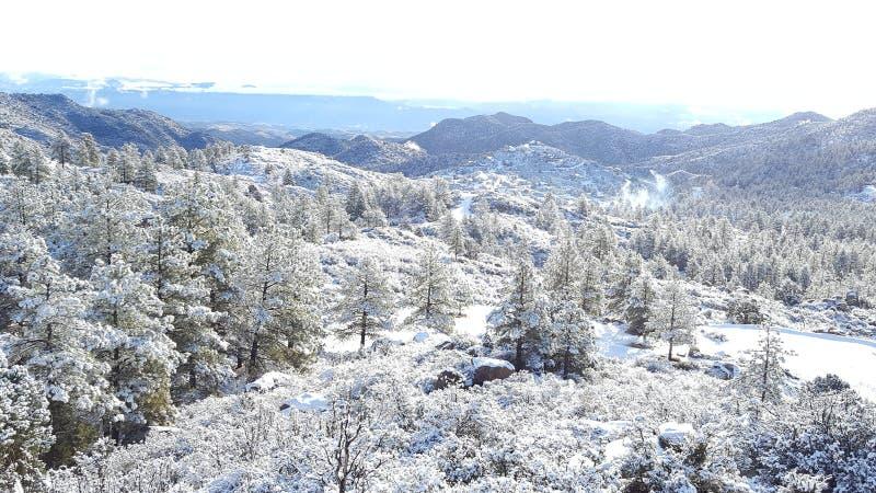Ημέρα χιονιού διασκέδασης στη χειμερινή χώρα των θαυμάτων στοκ εικόνα με δικαίωμα ελεύθερης χρήσης