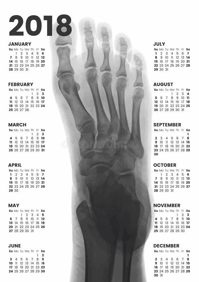 Ημερολόγιο τοίχων ποδιών ακτίνας X 2018 διανυσματική απεικόνιση