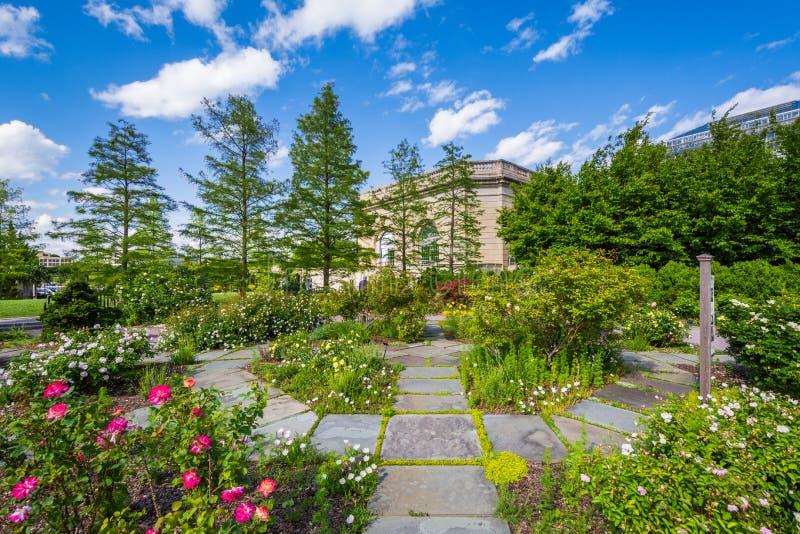 Ηνωμένος βοτανικός κήπος στην Ουάσιγκτον, συνεχές ρεύμα στοκ φωτογραφία με δικαίωμα ελεύθερης χρήσης