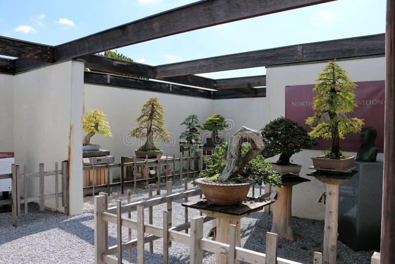 Ηνωμένος εθνικός δενδρολογικός κήπος στοκ εικόνα