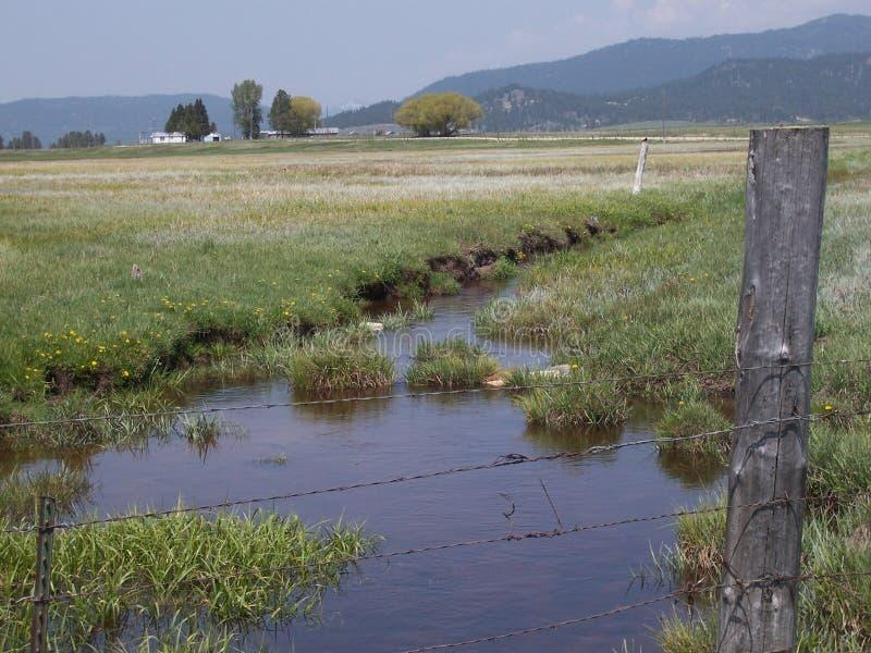 Ηρεμία ενός κολπίσκου που τρέχει μέσω ενός τομέα στη χώρα στοκ φωτογραφία