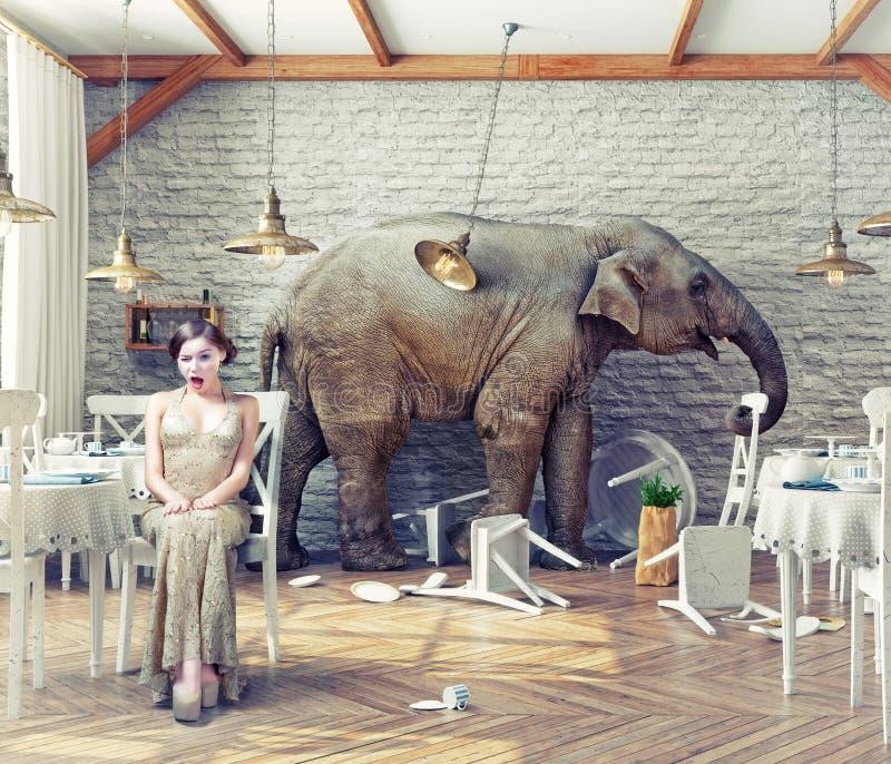 Ηρεμία ελεφάντων σε ένα εστιατόριο απεικόνιση αποθεμάτων