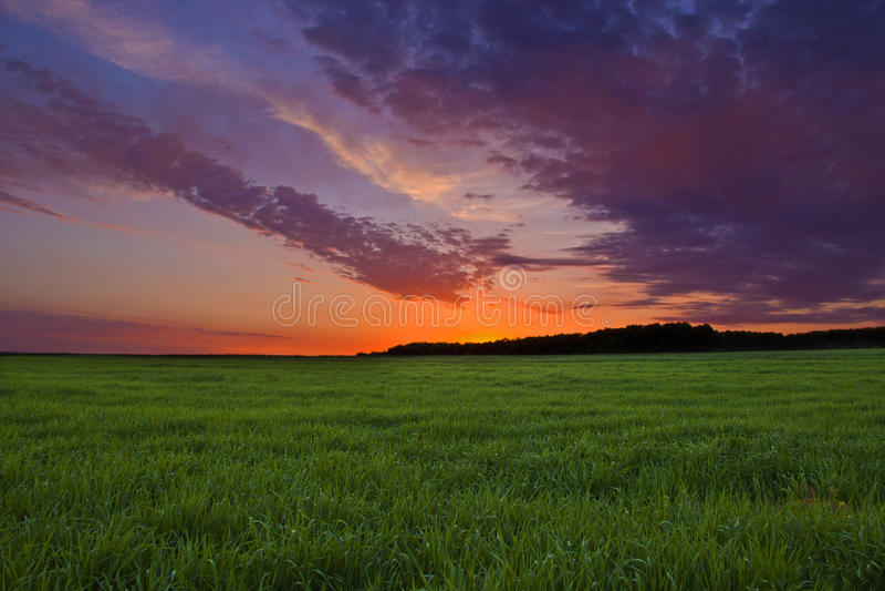 Ηρεμία της φύσης στοκ φωτογραφία με δικαίωμα ελεύθερης χρήσης
