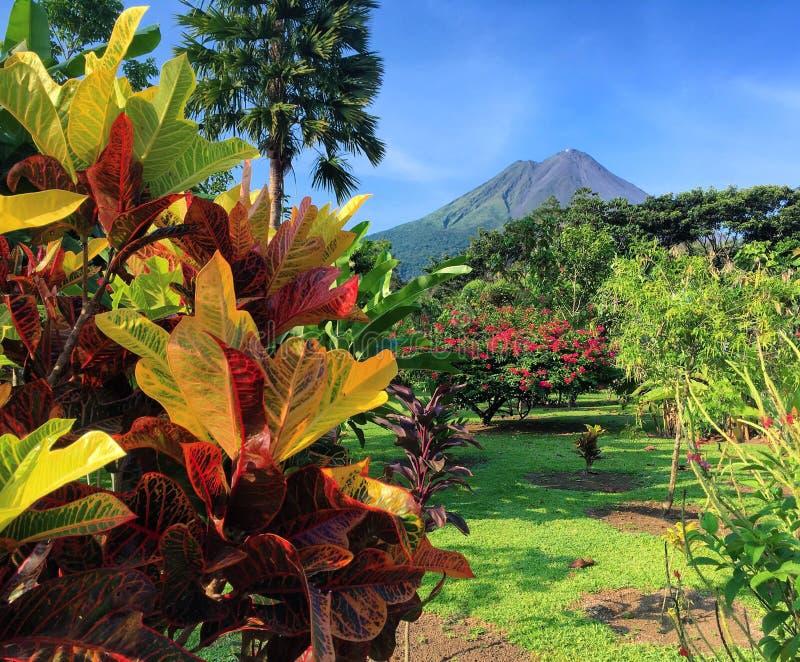 Ηφαίστειο από τον κήπο στοκ φωτογραφίες