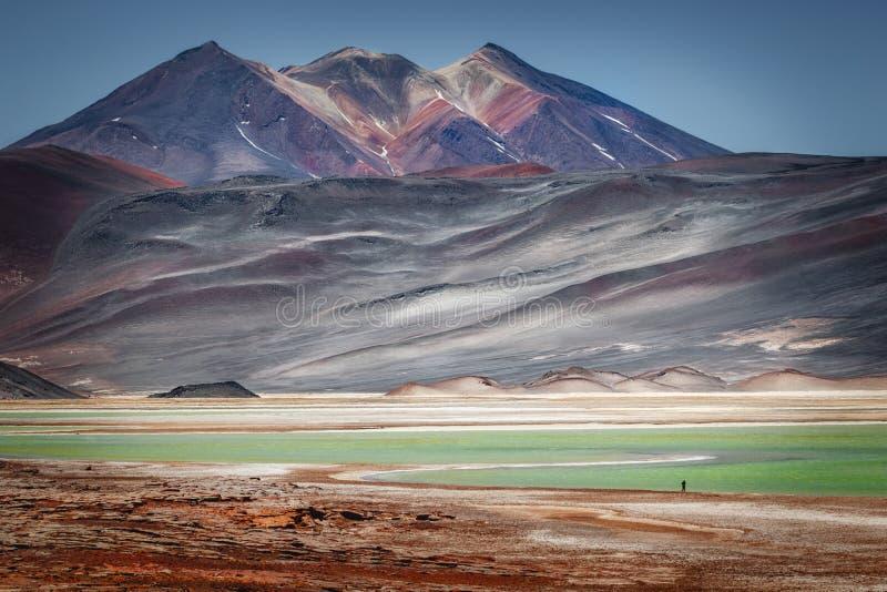 Ηφαίστειο Caichinque από Salar de Talar, κοντά σε Aguas Calientes, μέσα στοκ εικόνες