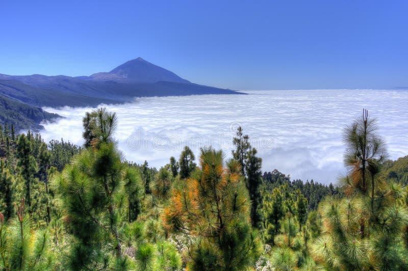 Ηφαίστειο Teide επάνω από τα σύννεφα, Tenerife, Κανάρια νησιά, Ισπανία στοκ φωτογραφία με δικαίωμα ελεύθερης χρήσης