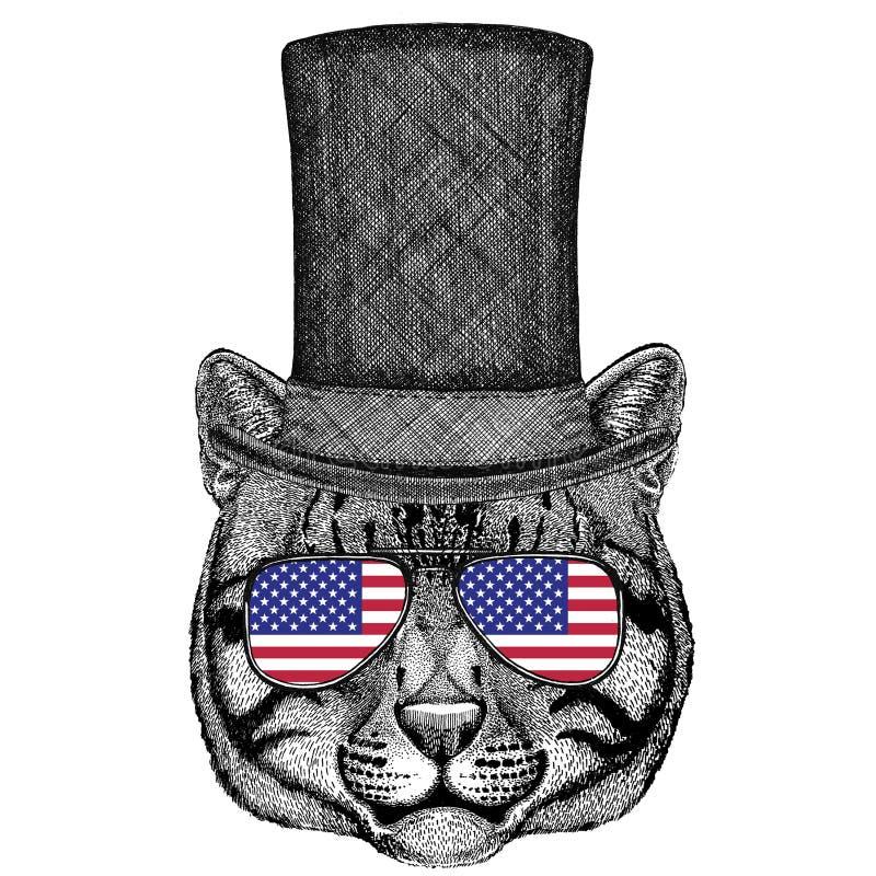 Η άγρια γάτα αλιείας γατών που φορούν το τοπ καπέλο κυλίνδρων και τα γυαλιά με την αμερικανική σημαία Ηνωμένες Πολιτείες της Αμερ διανυσματική απεικόνιση