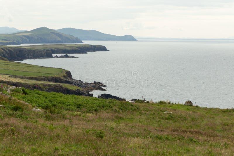 Η άγρια ιρλανδική ακτή του κεφαλιού Slea στοκ εικόνα