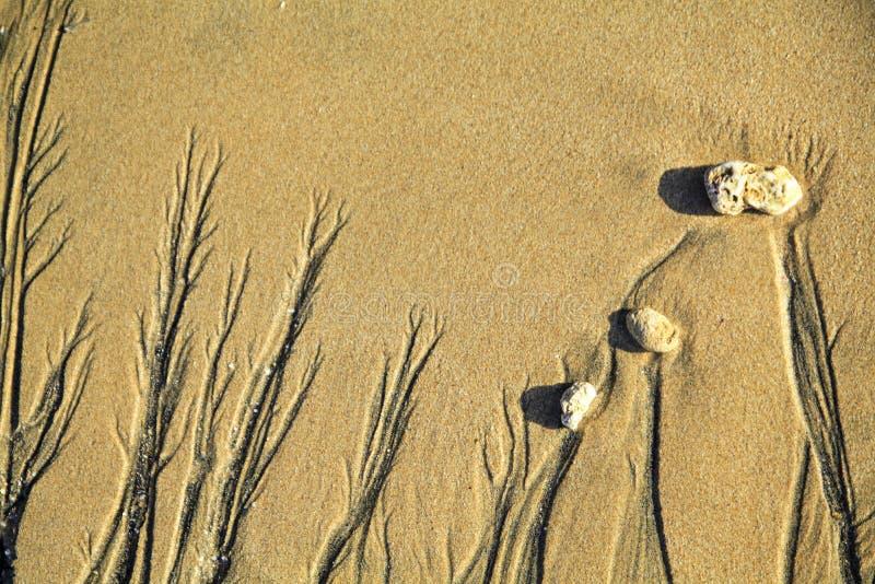 Η άμμος που χρωματίζει 2 στοκ φωτογραφία