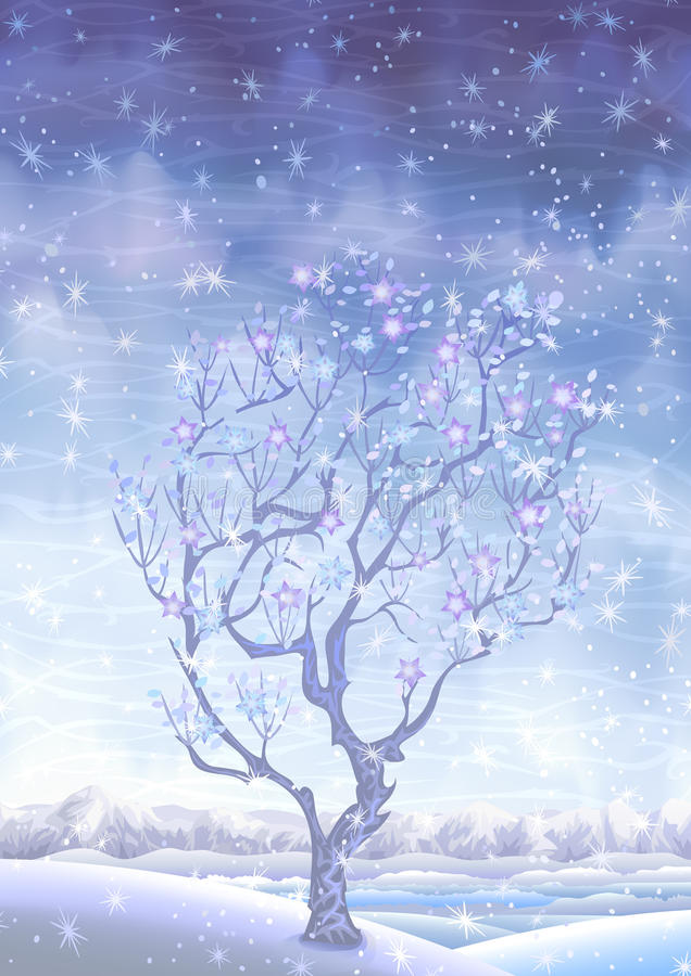 η άνθιση κάλυψε το χειμώνα & ελεύθερη απεικόνιση δικαιώματος