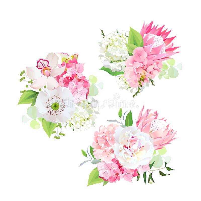 Η άνοιξη ανάμιξε τις ανθοδέσμες του ρόδινου και άσπρου hydrangea, λουλούδια protea, άσπρη παπαρούνα, peony, ορχιδέα απεικόνιση αποθεμάτων