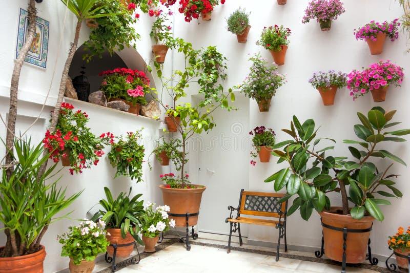 Η άνοιξη ανθίζει τη διακόσμηση του παλαιού σπιτιού, Κόρδοβα, Ισπανία, Ευρώπη στοκ εικόνα με δικαίωμα ελεύθερης χρήσης