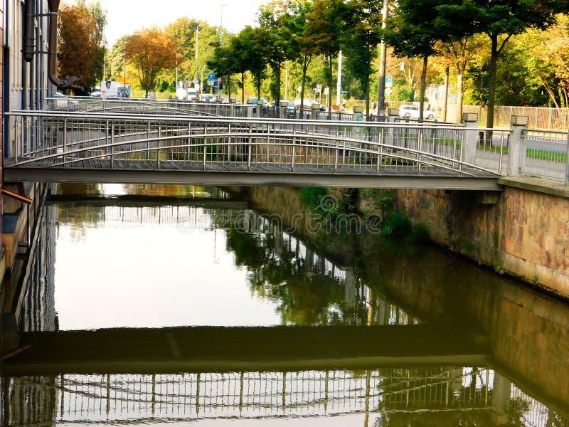 Η άνοιξη είναι αναγέννηση στον ποταμό στοκ φωτογραφίες με δικαίωμα ελεύθερης χρήσης