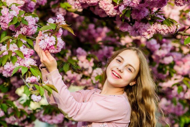 Η άνοιξη είναι στην καρδιά μου ευτυχές κορίτσι στο λουλούδι κερασιών Άνθιση δέντρων Sakura μυρωδιά ανθών, αλλεργία Skincare r στοκ φωτογραφία με δικαίωμα ελεύθερης χρήσης