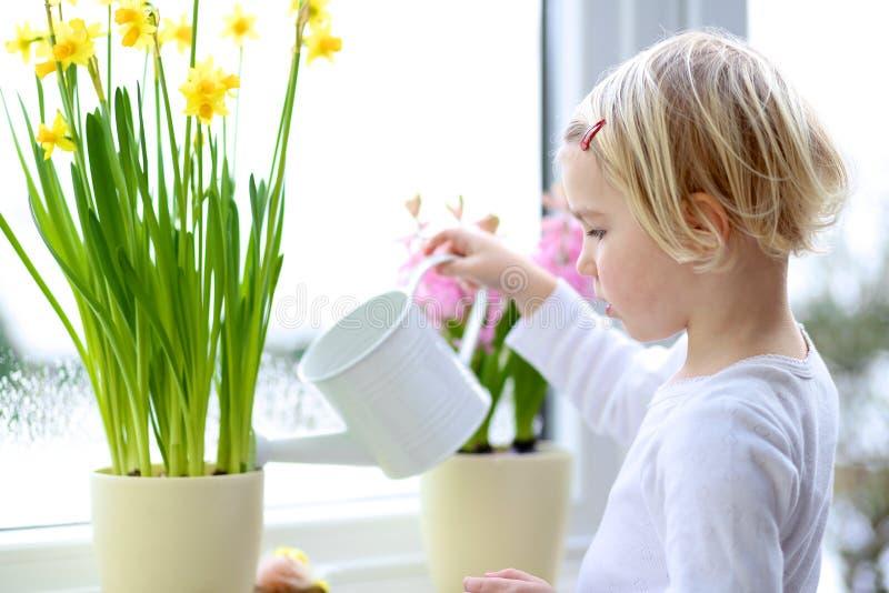 Η άνοιξη ποτίσματος μικρών κοριτσιών ανθίζει στο σπίτι στοκ φωτογραφίες